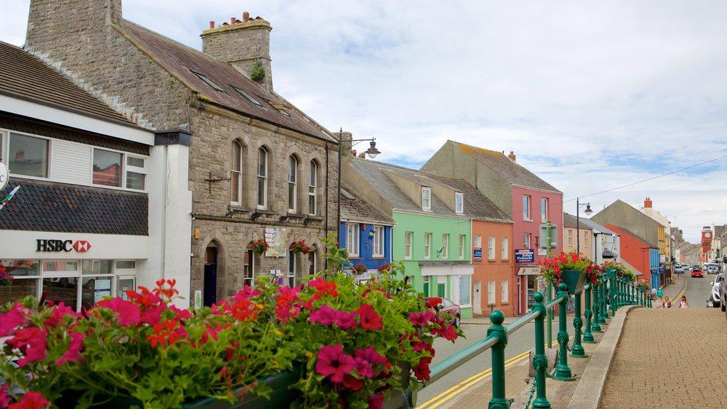 Pembroke showing street scenes
