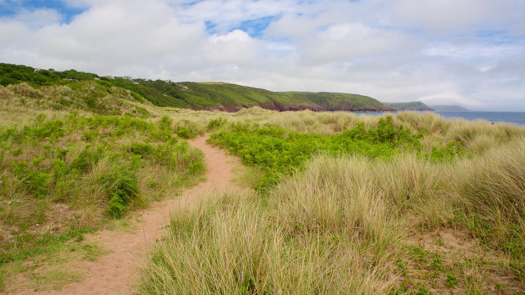 Freshwater East Beach which includes hiking or walking and general coastal views
