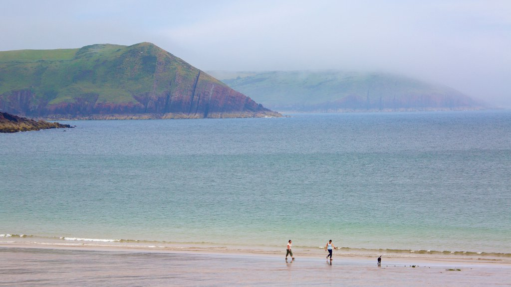 Freshwater East Beach featuring a beach, mist or fog and general coastal views