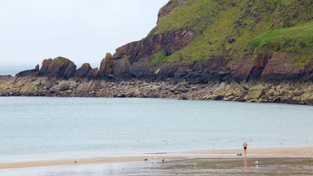 Freshwater East Beach which includes rugged coastline, general coastal views and a sandy beach