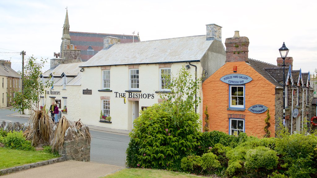 St Davids showing a small town or village and street scenes