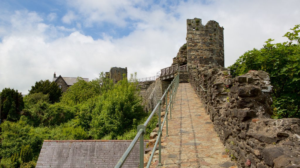 Conwy showing chateau or palace, heritage elements and a ruin