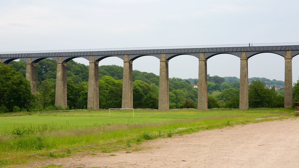 Wrexham which includes a bridge