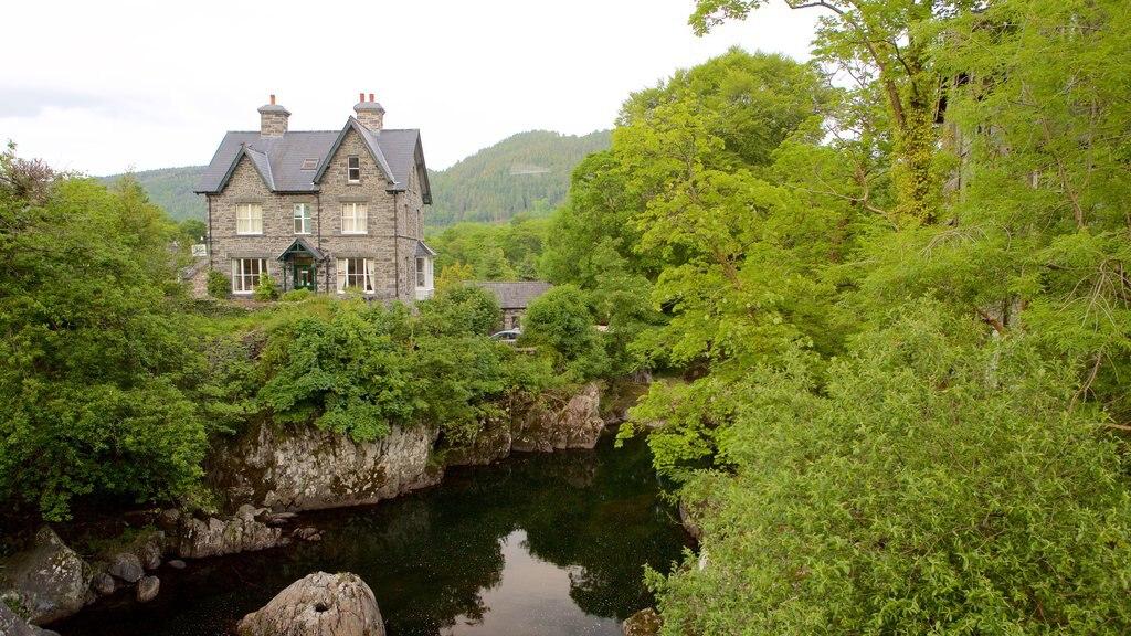 Betws-Y-Coed mostrando escenas forestales, un río o arroyo y una casa