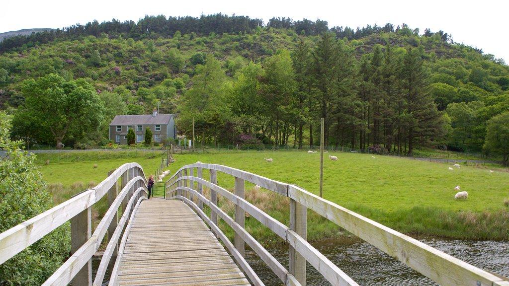 Betws Garmon que incluye tierras de cultivo y un puente