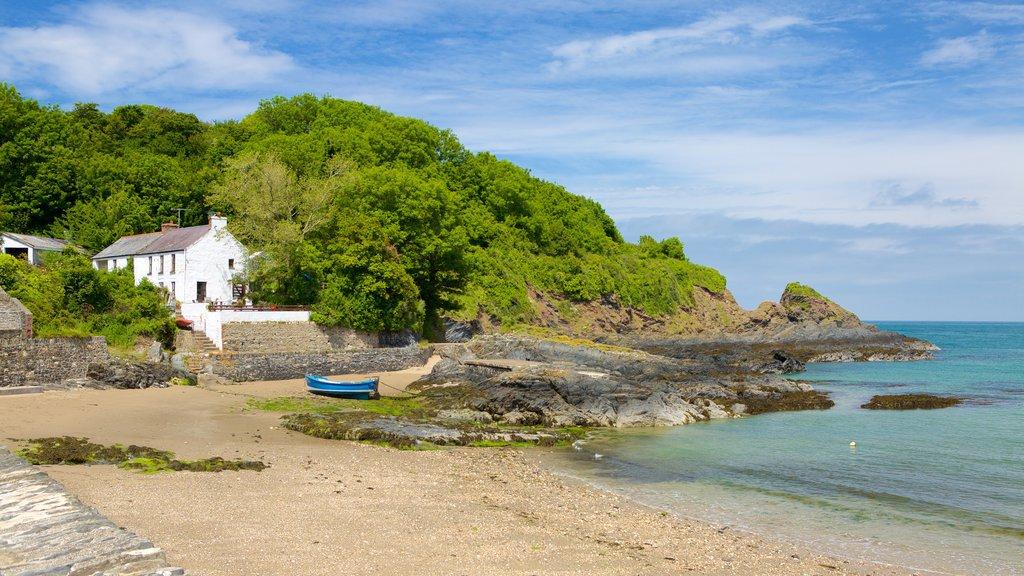Pembrokeshire Coast National Park which includes a sandy beach, a coastal town and a pebble beach
