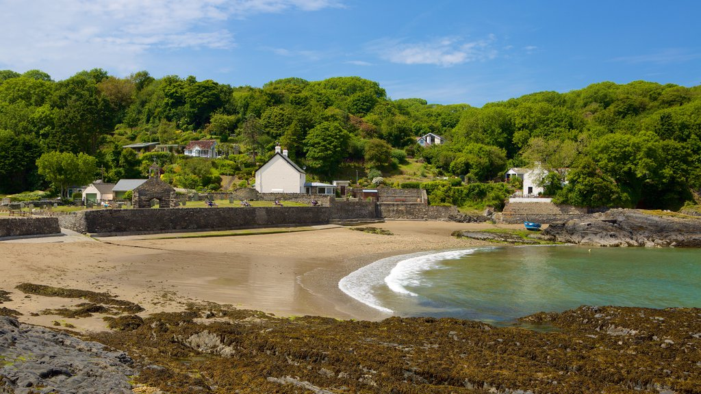 Pembrokeshire Coast National Park featuring a coastal town and a beach