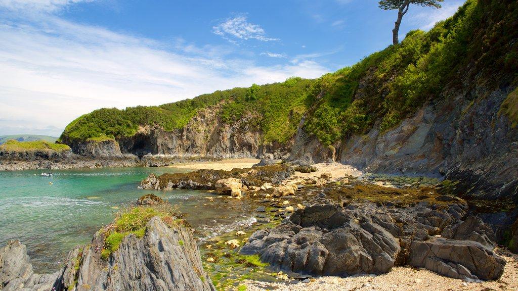 Parque Nacional Pembrokeshire Coast mostrando una bahía o puerto, costa escarpada y vistas de paisajes