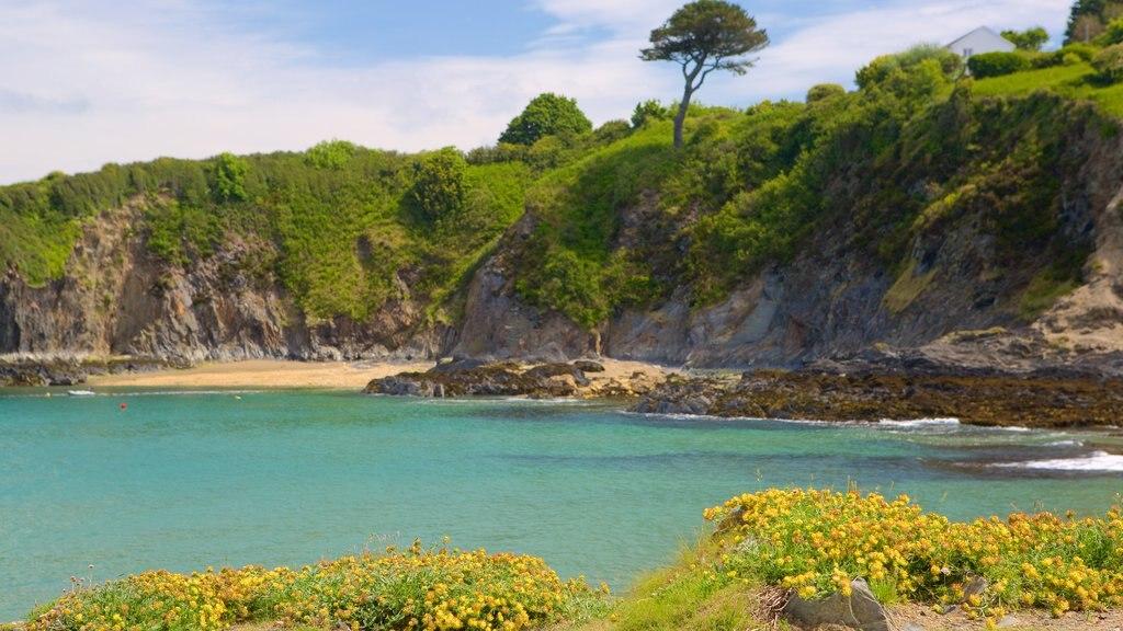 Pembrokeshire Coast National Park showing general coastal views and rocky coastline