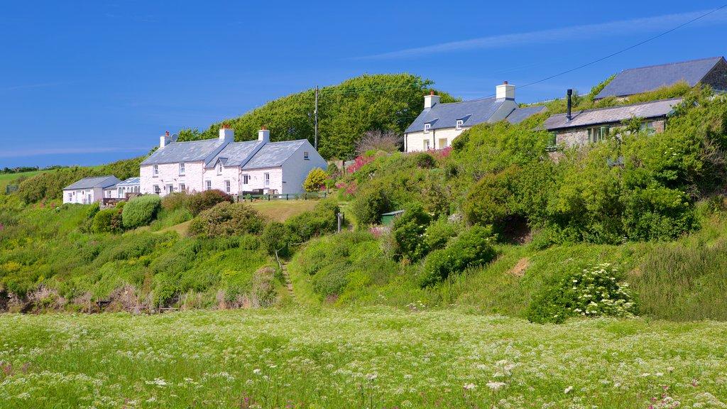 Pembrokeshire Coast National Park showing a coastal town and farmland
