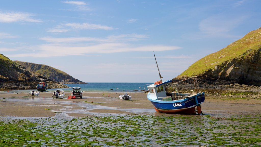 Pembrokeshire Coast National Park featuring a sandy beach and boating
