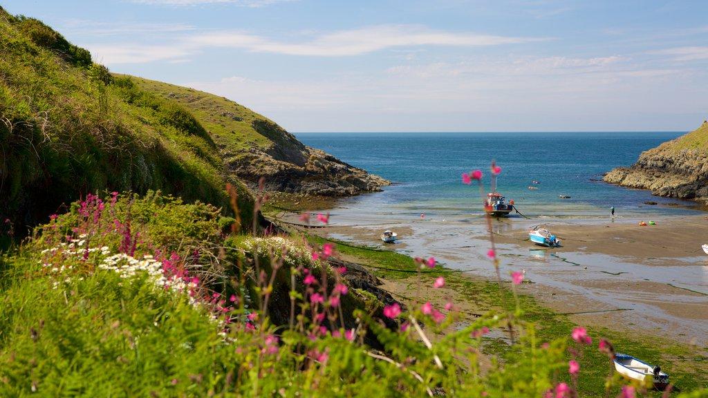 Pembrokeshire Coast National Park featuring general coastal views and a sandy beach