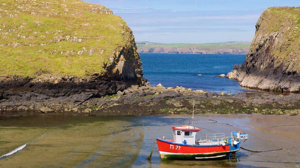 Pembrokeshire Coast National Park showing boating, a beach and general coastal views