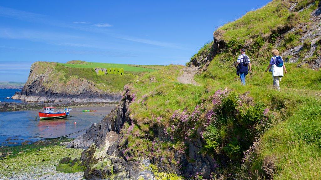 Pembrokeshire Coast National Park featuring hiking or walking and general coastal views