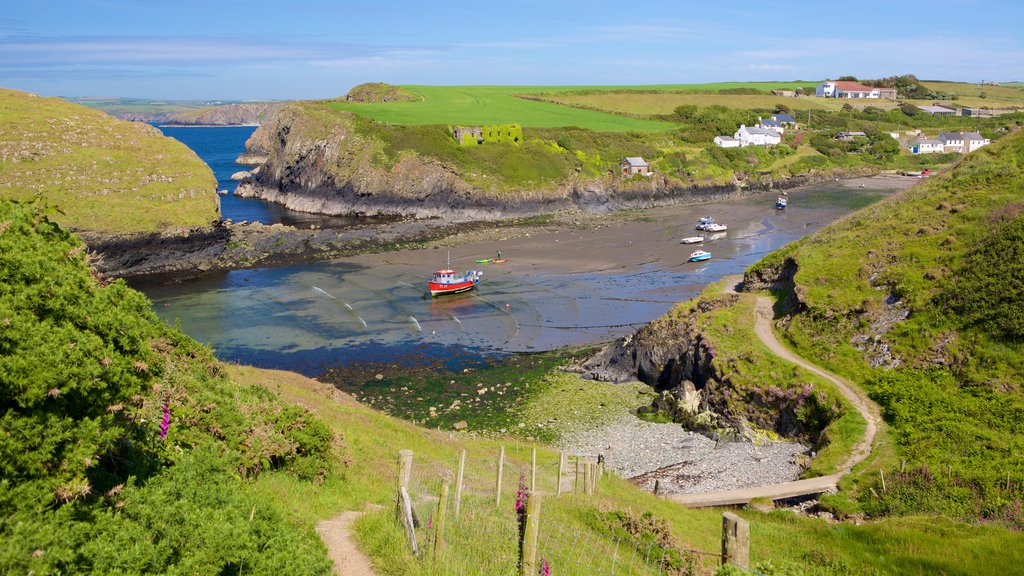 Pembrokeshire Coast National Park featuring landscape views and general coastal views