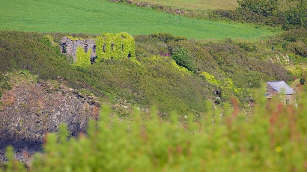 Pembrokeshire Coast National Park showing farmland