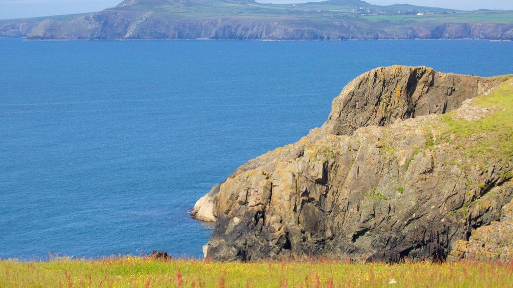 Pembrokeshire Coast National Park showing rugged coastline