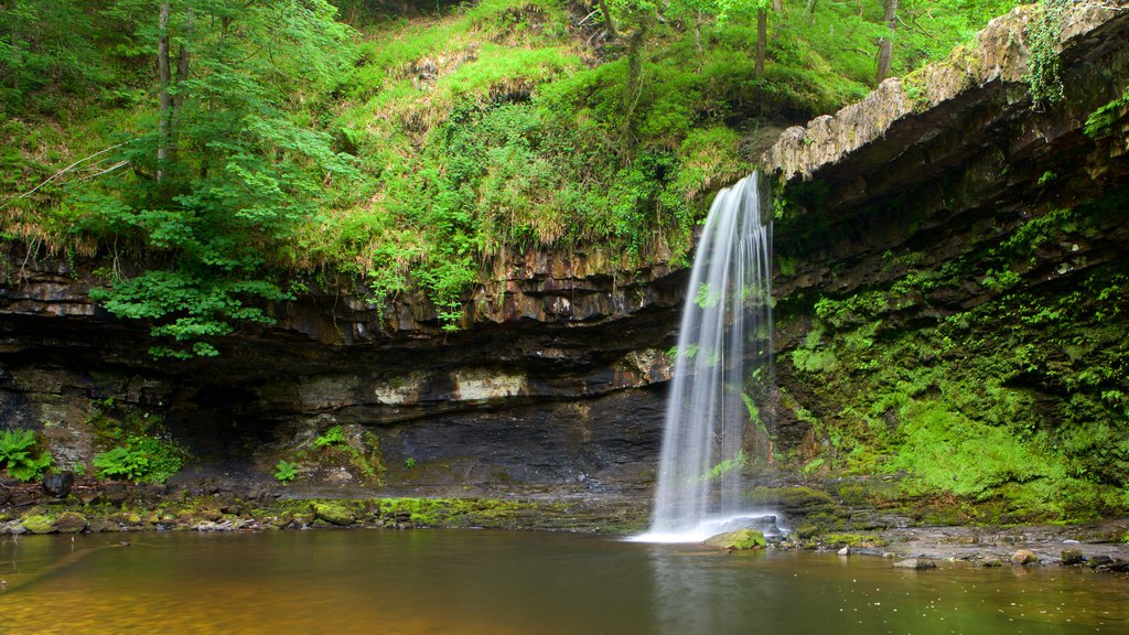 Parque Nacional Brecon Beacons ofreciendo selva, una catarata y un lago o abrevadero
