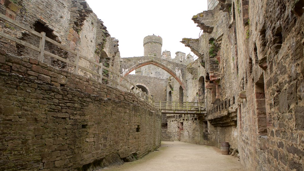 Conwy Castle featuring heritage elements and chateau or palace