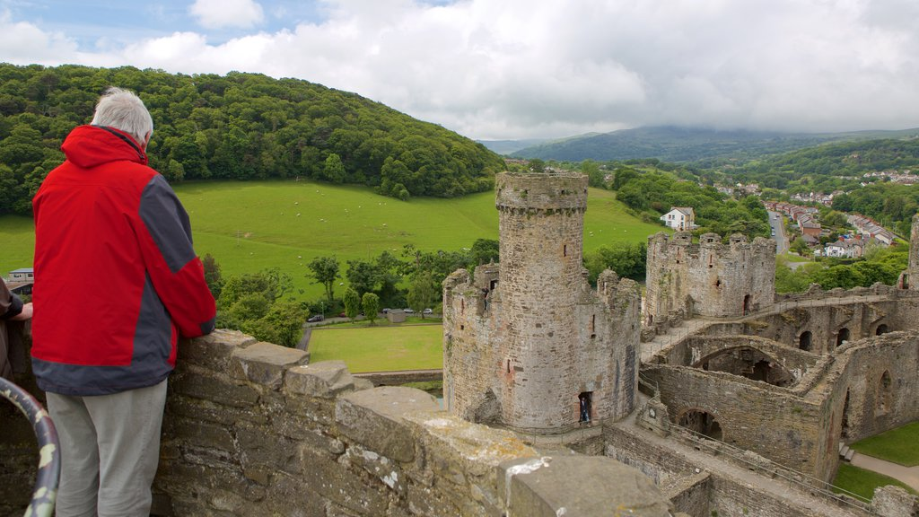 Conwy Castle which includes heritage elements, a castle and views