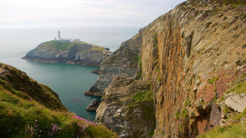 South Stack Lighthouse which includes rugged coastline, a gorge or canyon and general coastal views