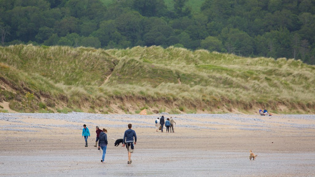 Oxwich Bay Beach showing a sandy beach as well as a small group of people