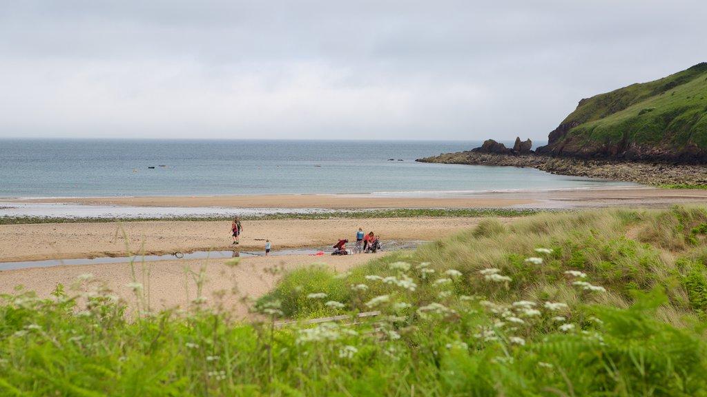 Freshwater East Beach which includes a beach