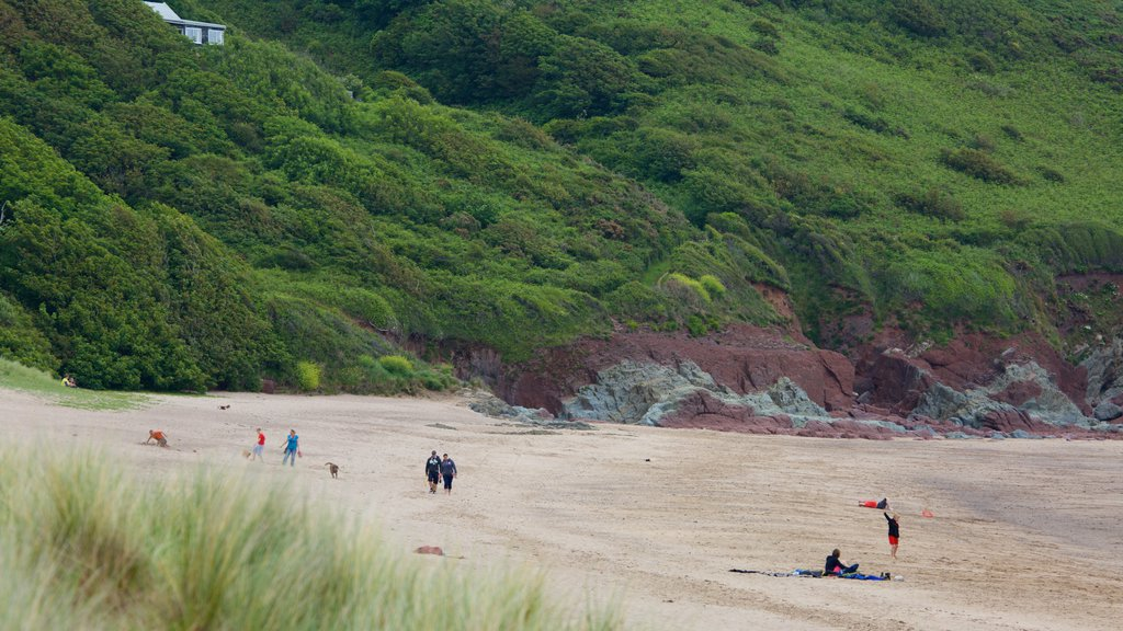 Freshwater East Beach which includes a sandy beach