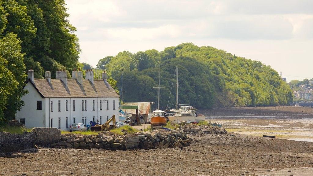 Bangor showing a house and a pebble beach