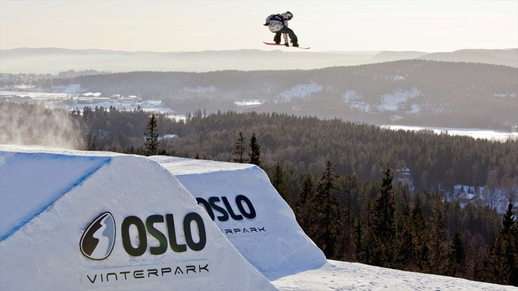 Oslo Winter Park which includes snow boarding and snow as well as an individual male