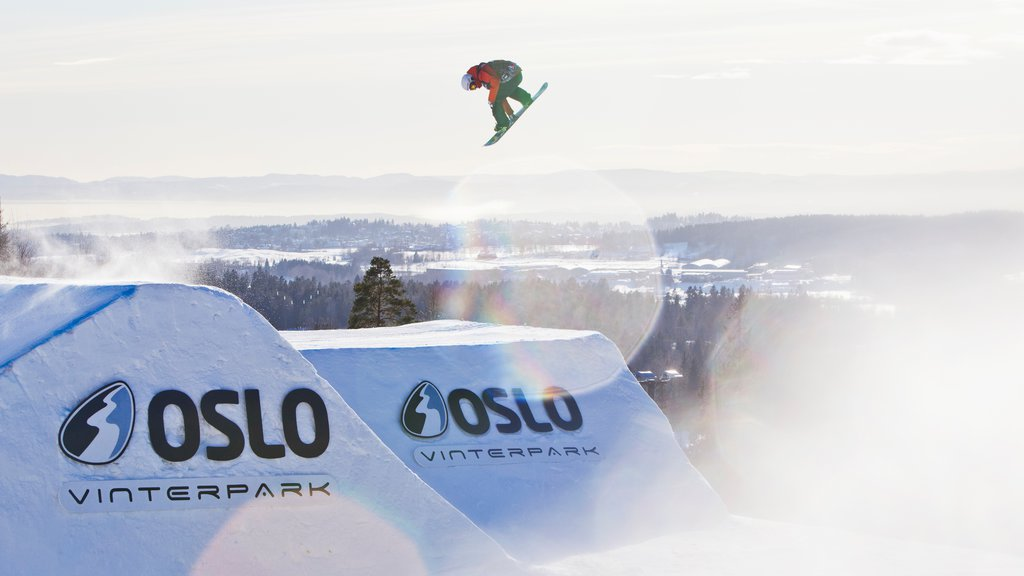 Oslo Winter Park showing snow and snow boarding as well as an individual femail
