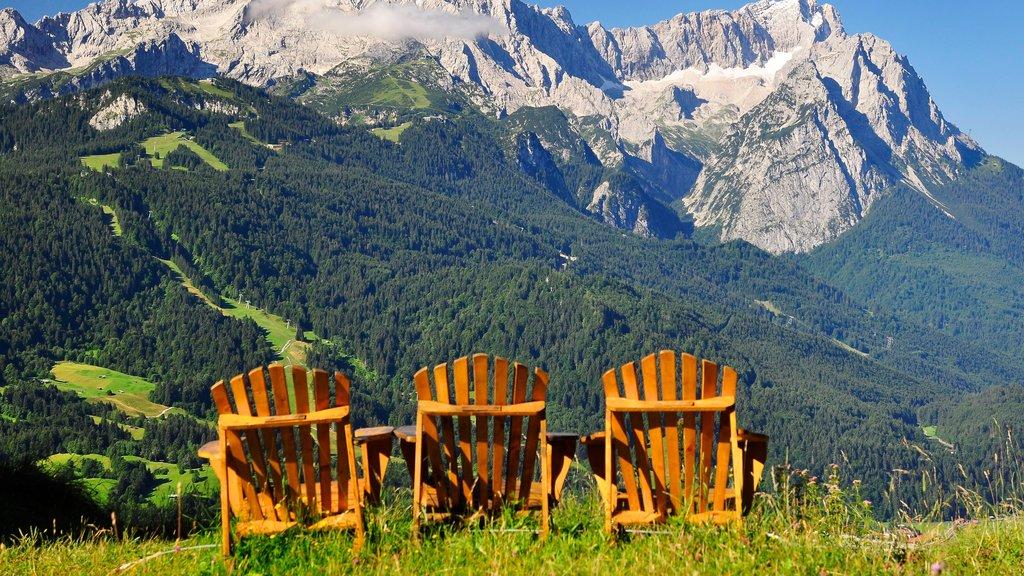 Garmisch-Partenkirchen Ski Resort which includes mountains and forest scenes