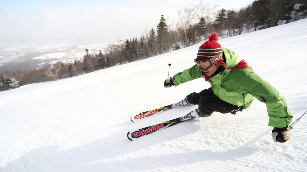 Appi Kogen Ski Resort showing snow and snow skiing as well as an individual male