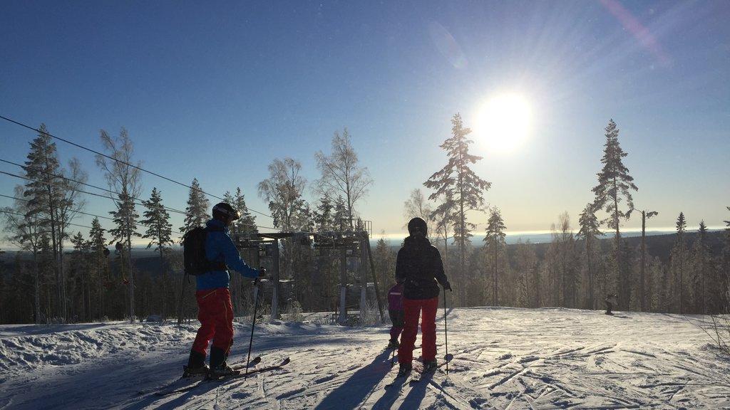 Estación de esquí Kungsberget mostrando esquiar en la nieve y nieve y también un pequeño grupo de personas