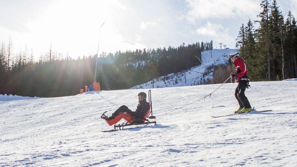 Branas Ski Resort , Syssleback, Suecia ofreciendo esquiar en la nieve y nieve y también un pequeño grupo de personas
