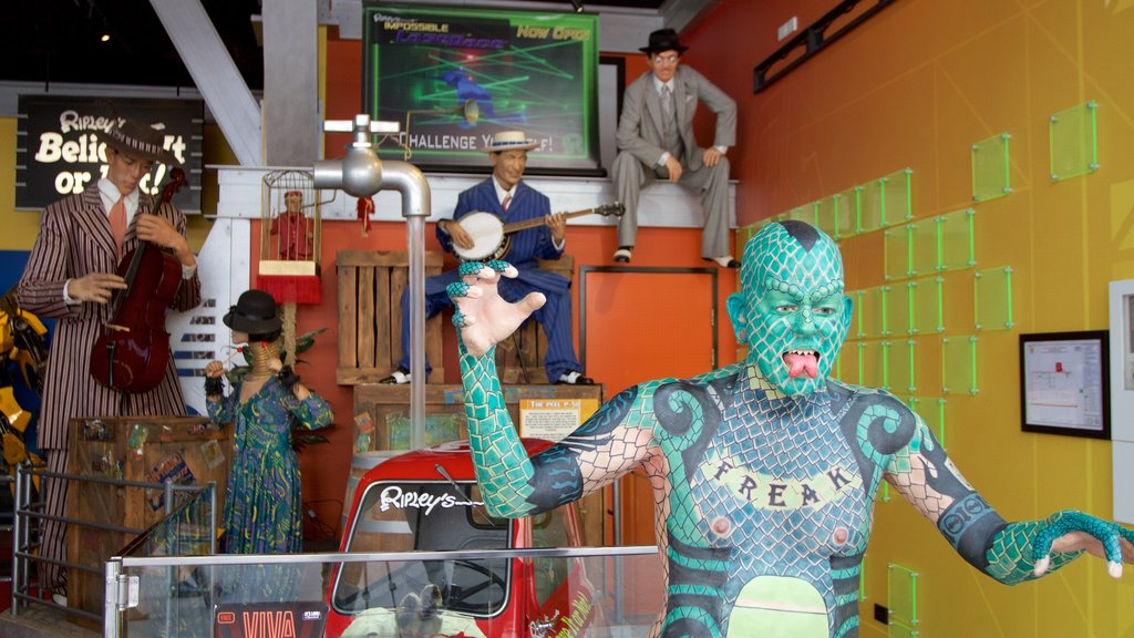 Ripley\'s Believe It or Not featuring interior views and outdoor art