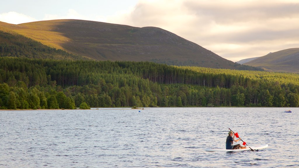 Loch Morlich which includes forest scenes, mountains and watersports