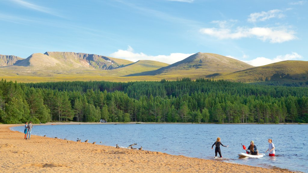 Loch Morlich which includes a lake or waterhole, mountains and forests