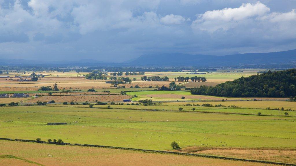 Stirling which includes farmland