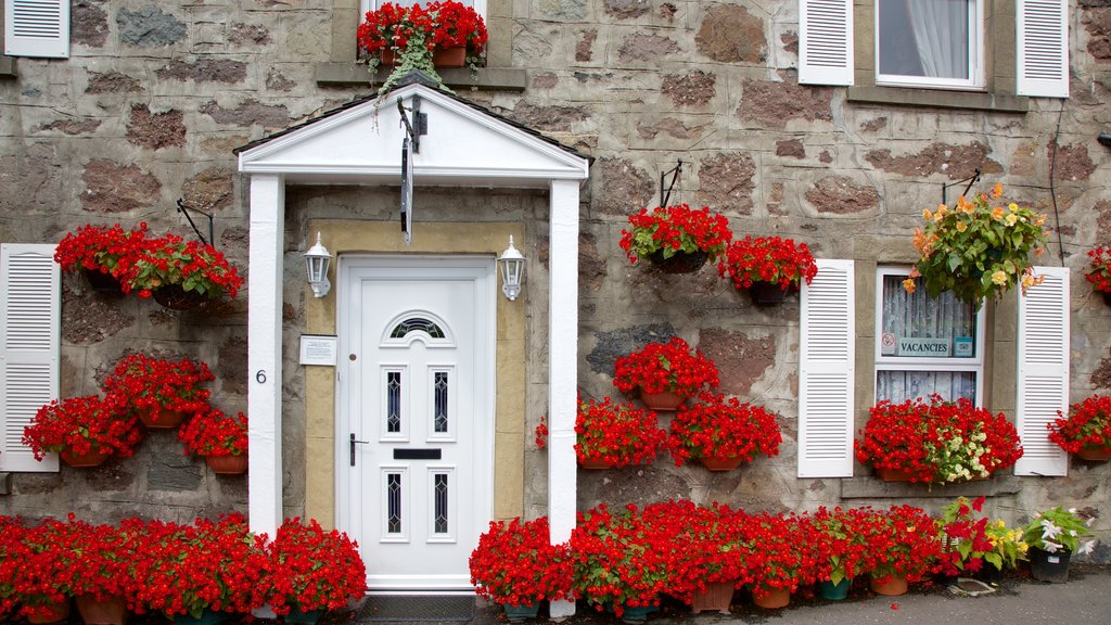 Callander showing street scenes, a house and flowers