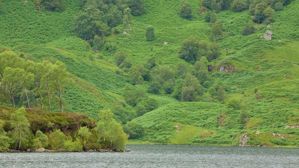 Loch Katrine showing a lake or waterhole and farmland