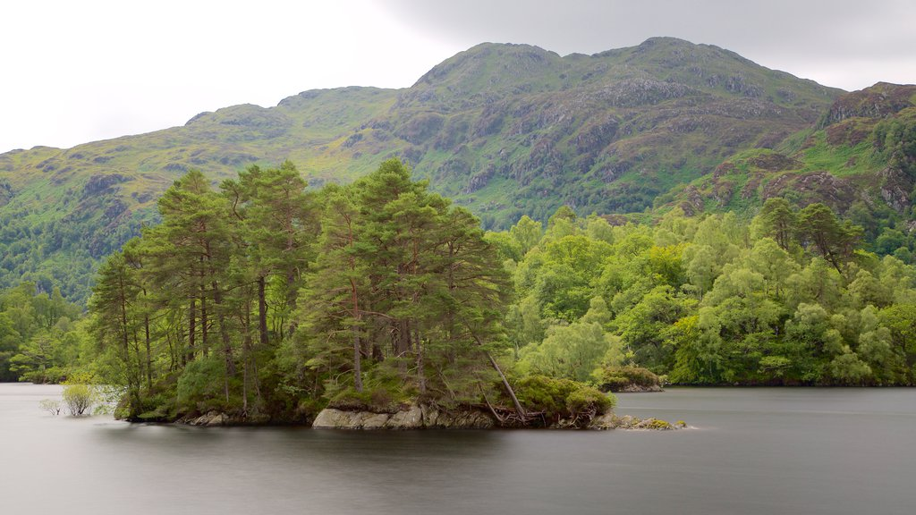 Loch Katrine which includes forest scenes, island images and a lake or waterhole