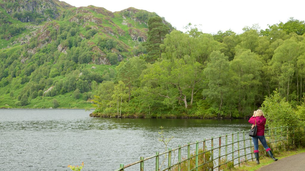Loch Katrine which includes a lake or waterhole and forests as well as an individual femail