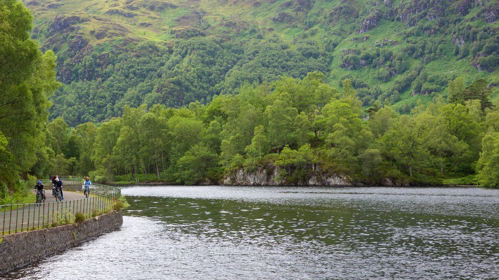 Loch Katrine showing a lake or waterhole and forest scenes
