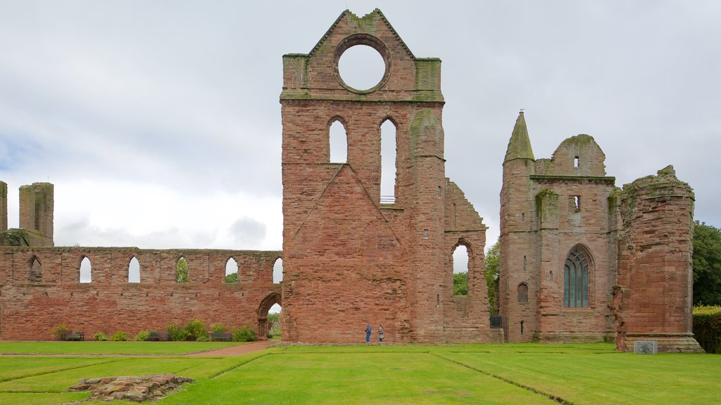 Arbroath Abbey showing heritage architecture and heritage elements
