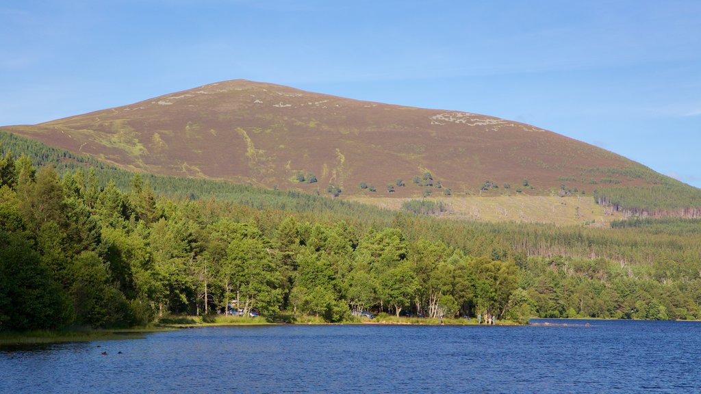 Loch Morlich showing forests, mountains and a lake or waterhole