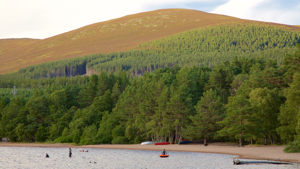Loch Morlich featuring a lake or waterhole and forests