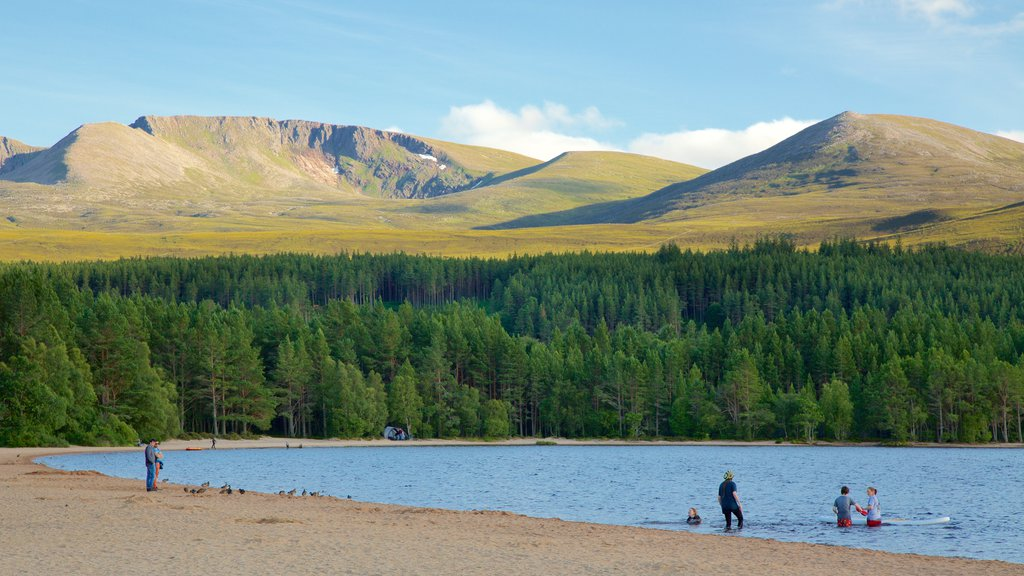 Loch Morlich featuring a lake or waterhole and forest scenes