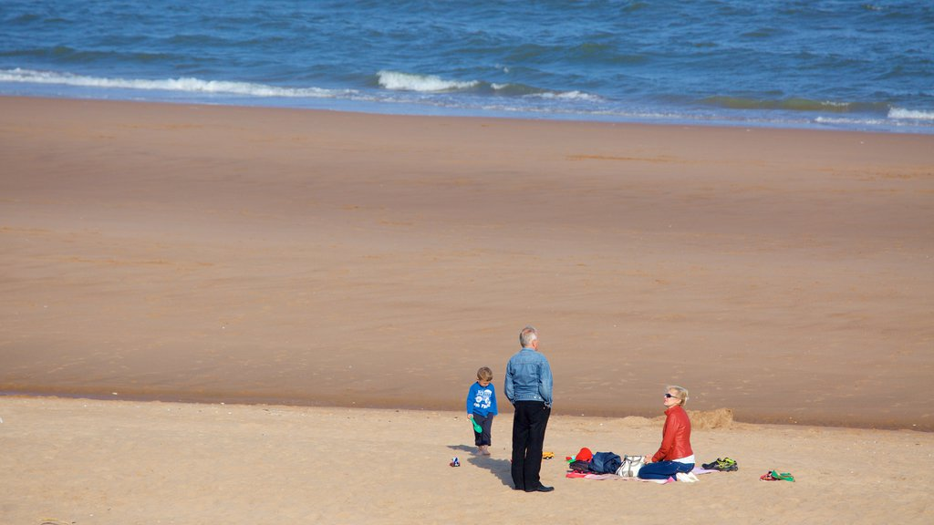 Balmedie Country Park showing a sandy beach as well as a family