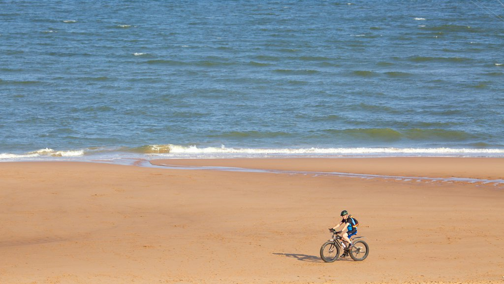 Balmedie Country Park featuring cycling, general coastal views and a sandy beach